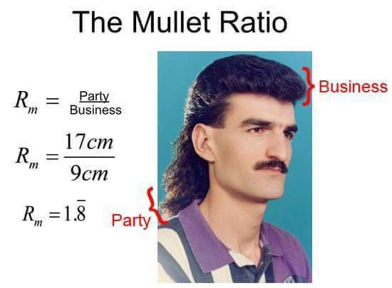 7 reasons why the mullet needs to make a comeback exit 13 medium as the above diagram proves mullets offer the perfect balance of business and party that any person needs in order to live a happy and healthy life urmus Choice Image