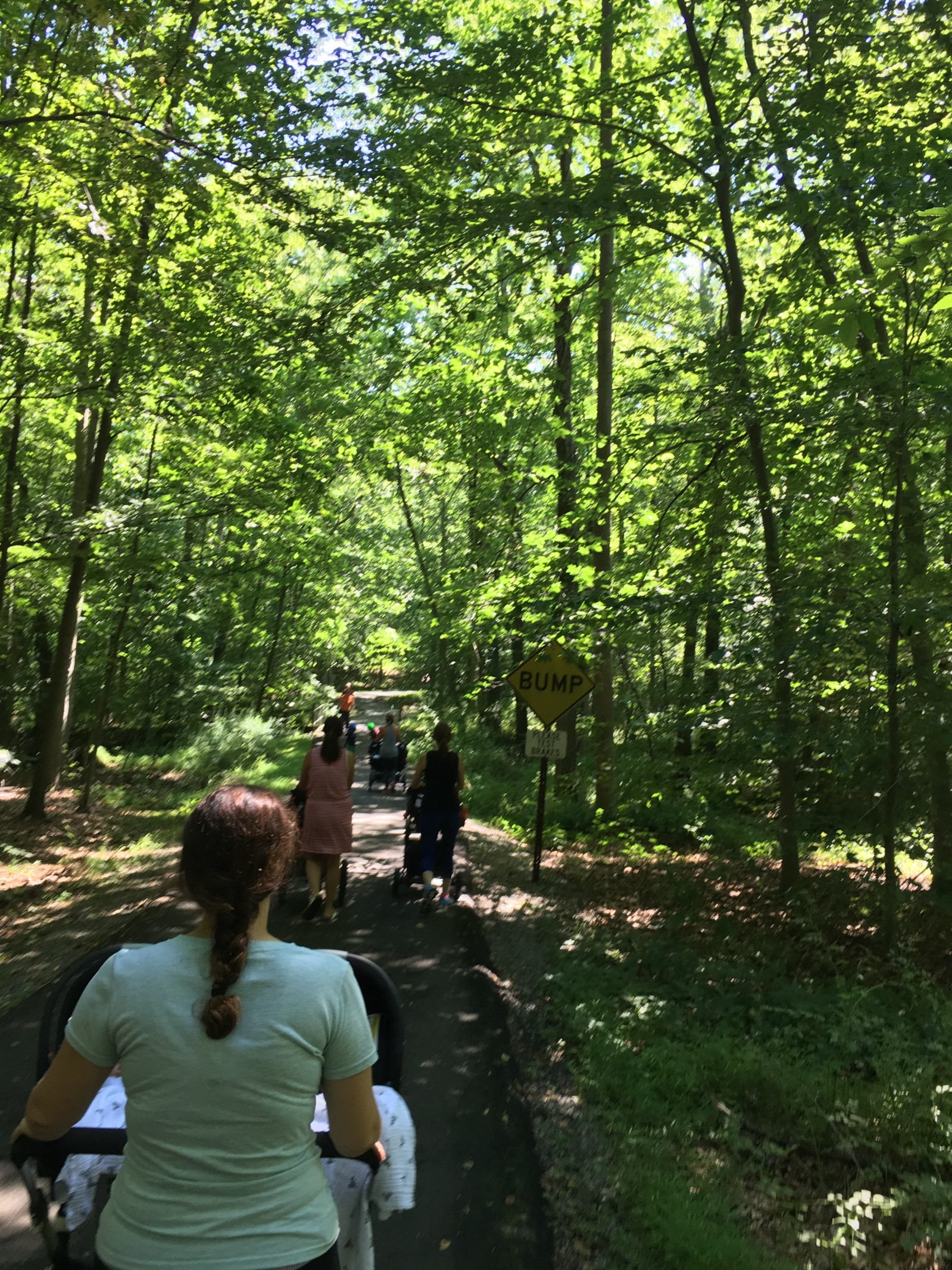 The 5 best child, infant, and stroller friendly hikes in Northern New Jersey