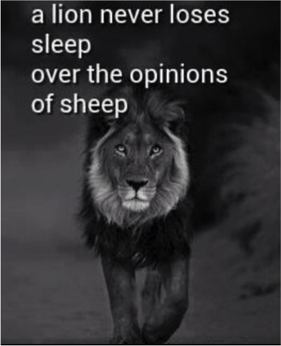 Please Stop Putting Quotes On Lions Lex Medium Inspiration Pictures Of Lion With Diss Quotes