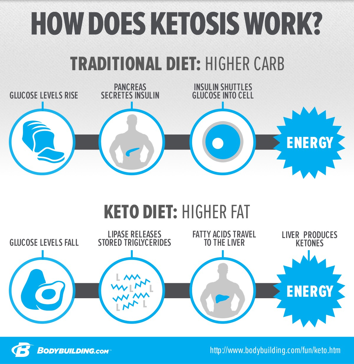 Ketogenic Diet: An Entrepreneurs' Guide on How to Avoid Diet Mistakes and Achieve Fat Loss in 2017