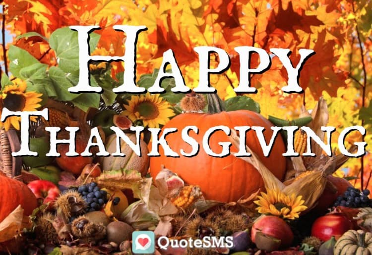 Thanksgiving Hd Wallpapers 2017 A Simple Approach To Be Thankful
