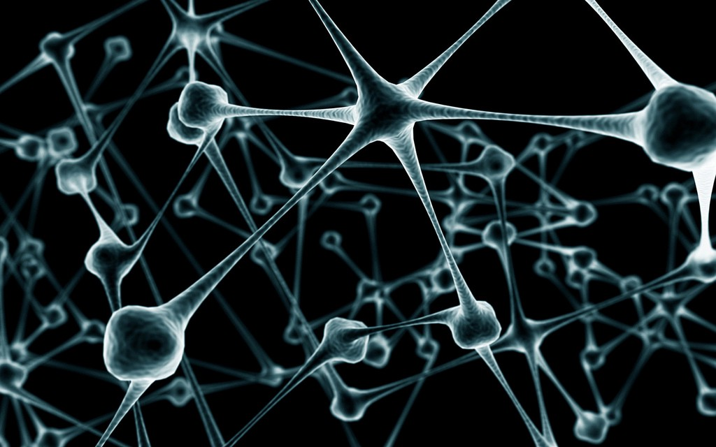 Deep Learning in Real Time — Inference Acceleration and Continuous Training