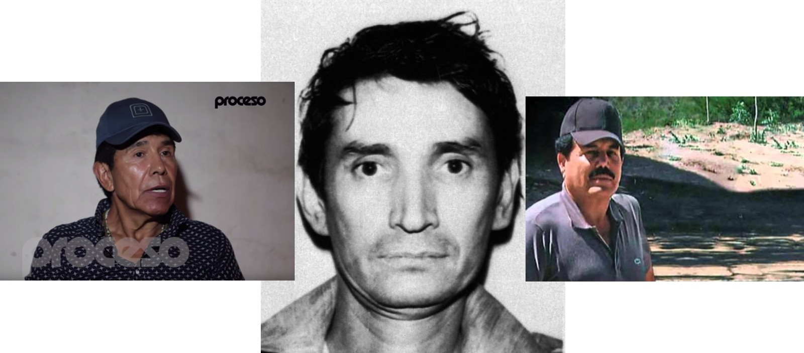 ismael el mayo zambada net worth and associate drug lords