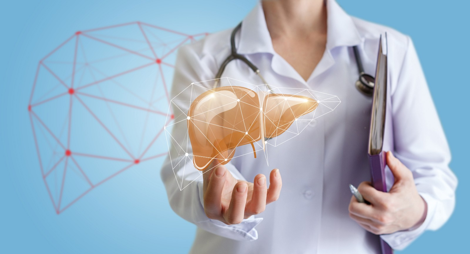 Developing Tests To Assess Liver Function The Liver Line