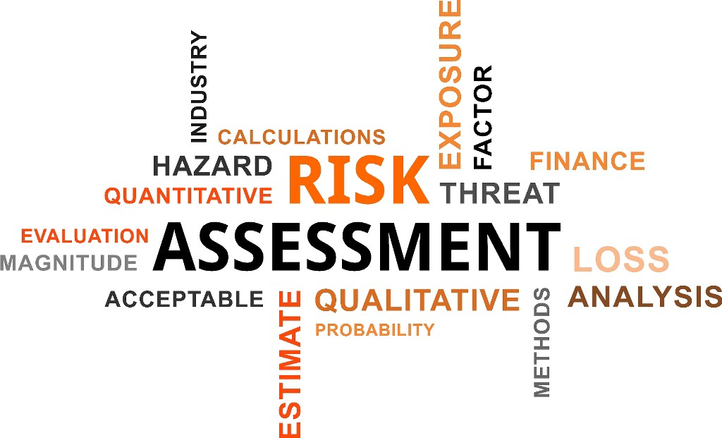 the role of risk assessment in The health and safety executive advises employers to follow five steps when carrying out a workplace risk assessment: step 1: identify hazards, ie anything that may cause harm.