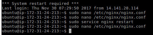 nginx client_max_body_size