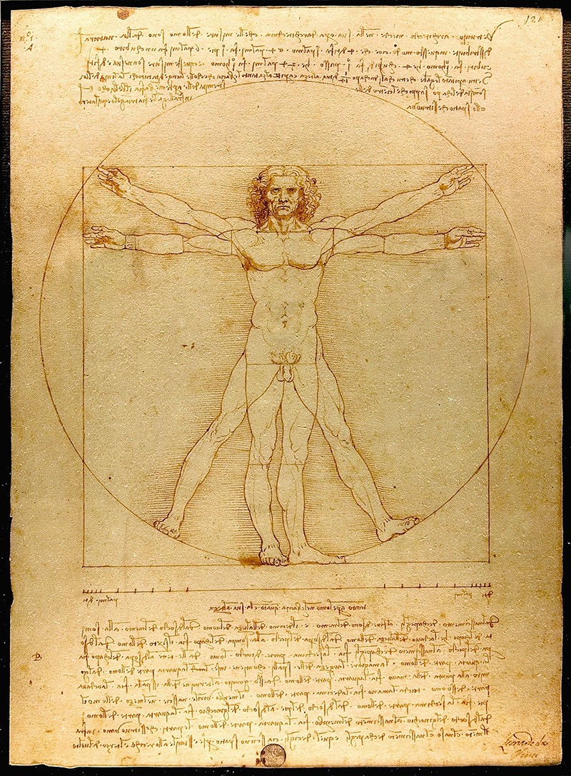 UX Collective  Leonardo Da Vinci Resume