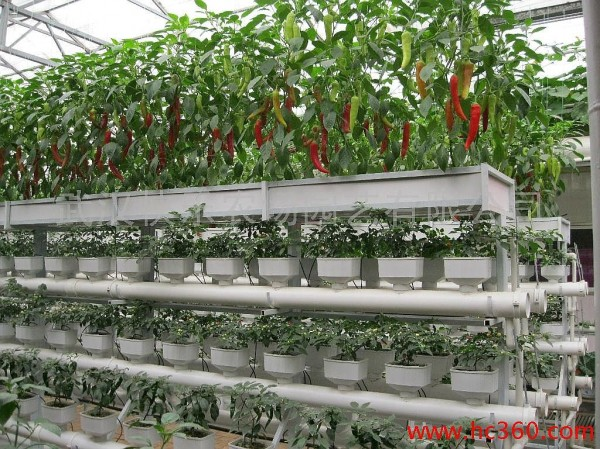 Hydroponic And Aquaponics Containers System In The Uae