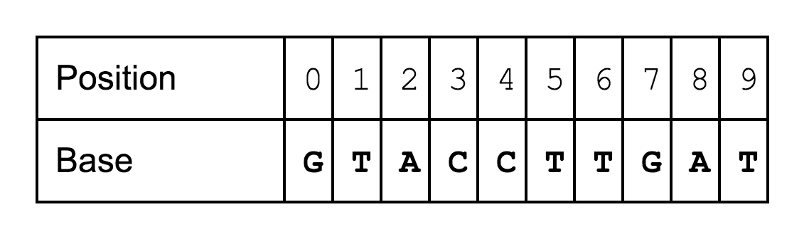 A Search Engine For The Human Genome Part I The Genome In Software