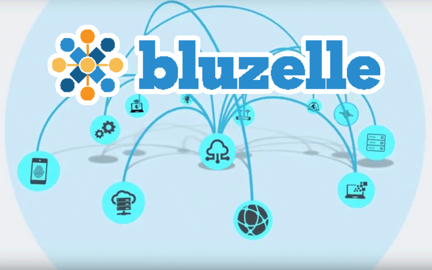 Image result for Bluzelle