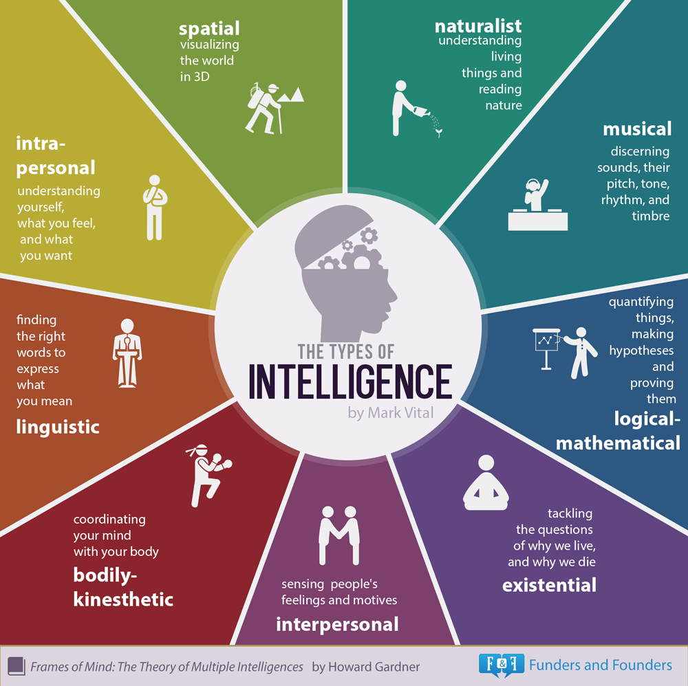 Which of the 9 Kinds of Intelligence Do You Have?