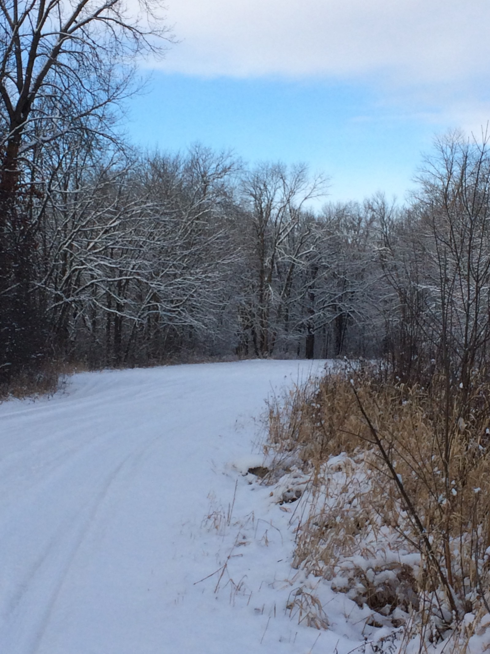 What Little Snow Weve Had This Winter >> Looks Like You Have As Much Snow As We Do Gail Boenning Medium