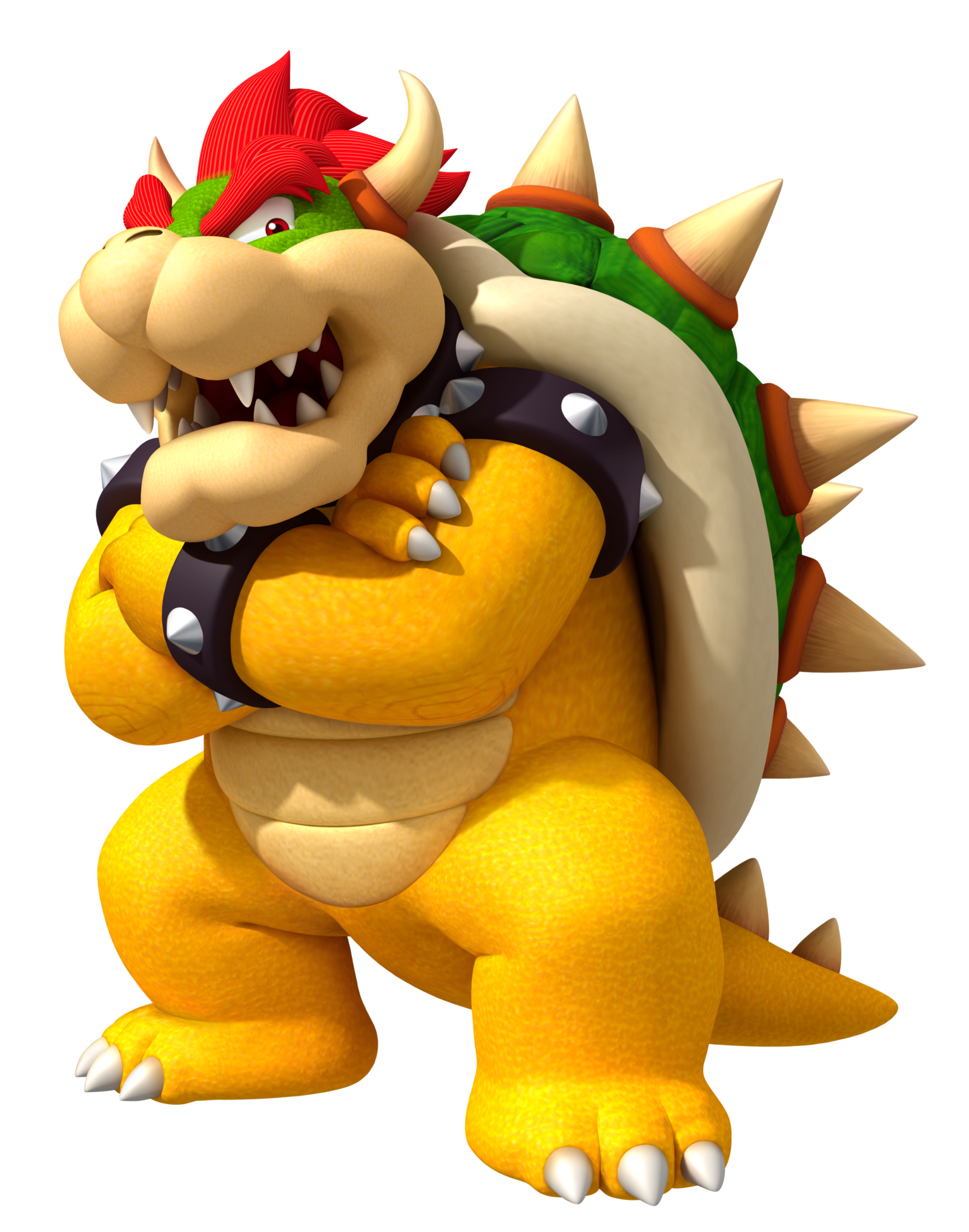 「Bowser」の画像検索結果