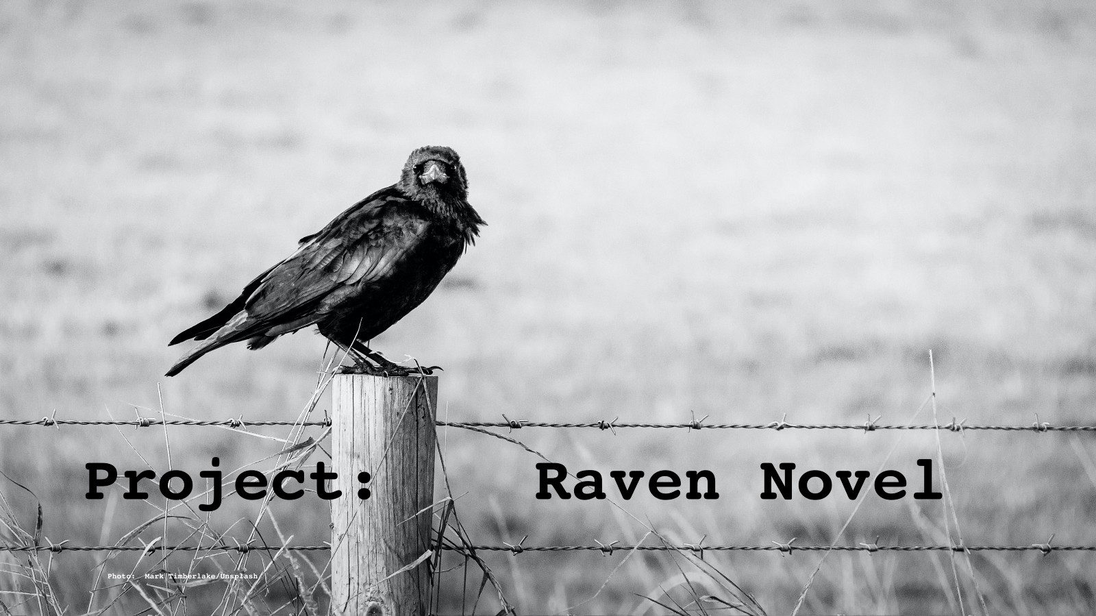 Project: Raven Novel by Jim Latham. Creative blogging a short story into a novel, one post at a time. The Project: Raven Novel logo.
