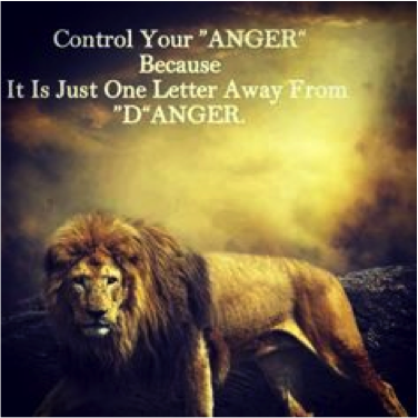 Please Stop Putting Quotes On Lions Lex Medium Cool Pictures Of Lion With Diss Quotes