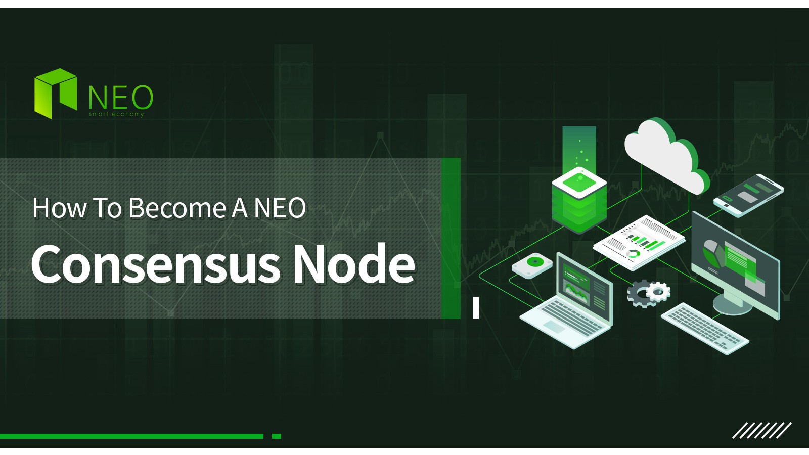 How To Become A NEO Consensus Node