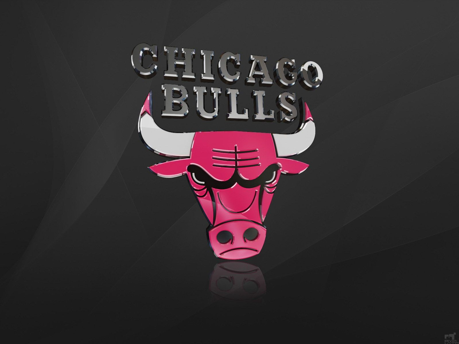 241d27d00fe Chicago Bulls Training Camp Preview – Chicago Bulls Confidential