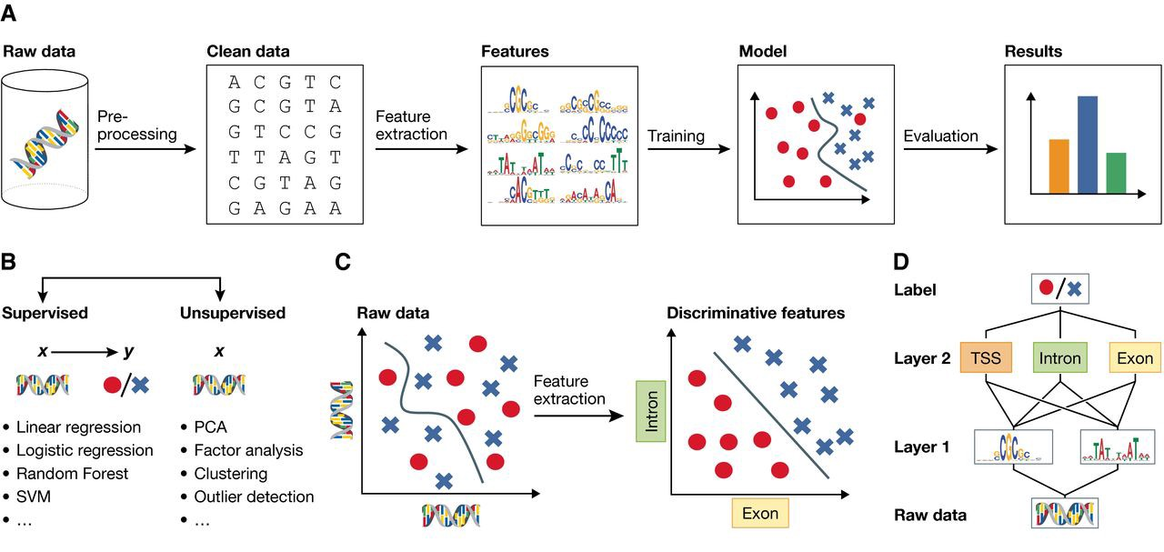 When Machine Learning meets Big Data - Towards Data Science