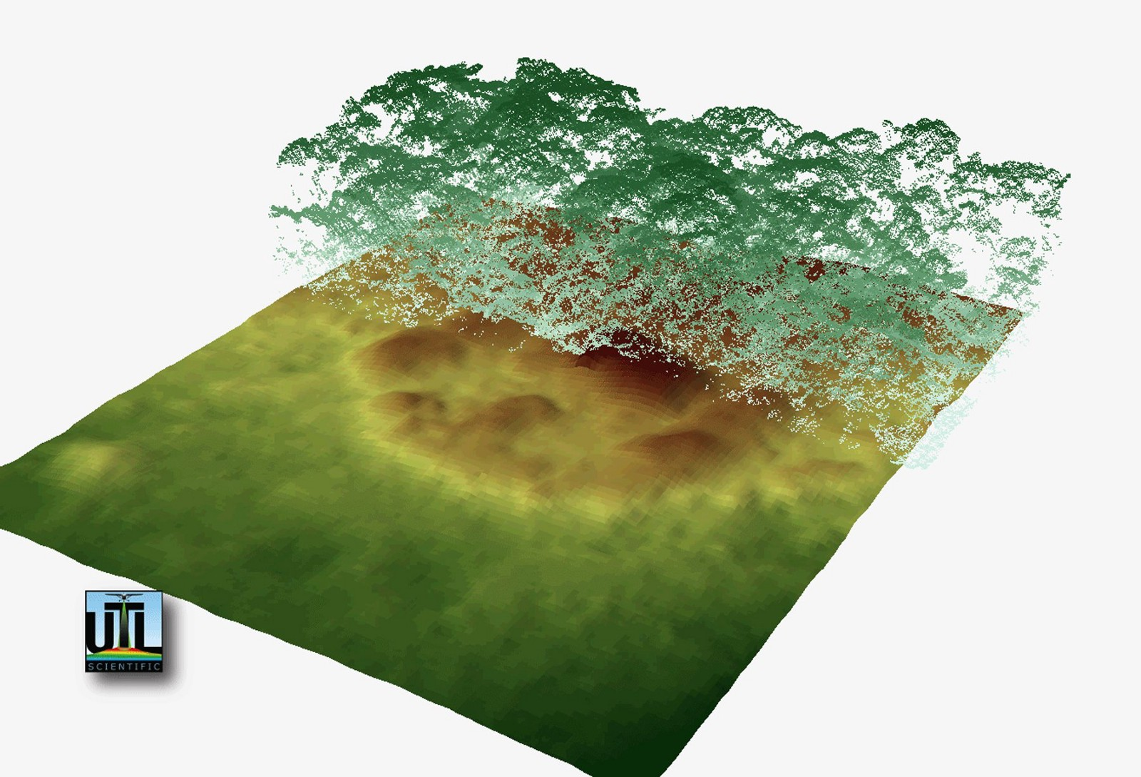 LiDAR Technology - Vegetation