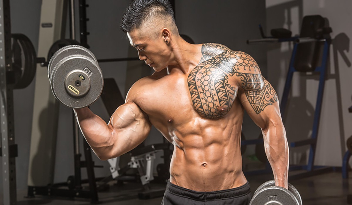 TOP 10 MUSCLE AND STRENGTH BUILDING MOVES FOR BETTER PHYSIQUE : BODYBUILDING
