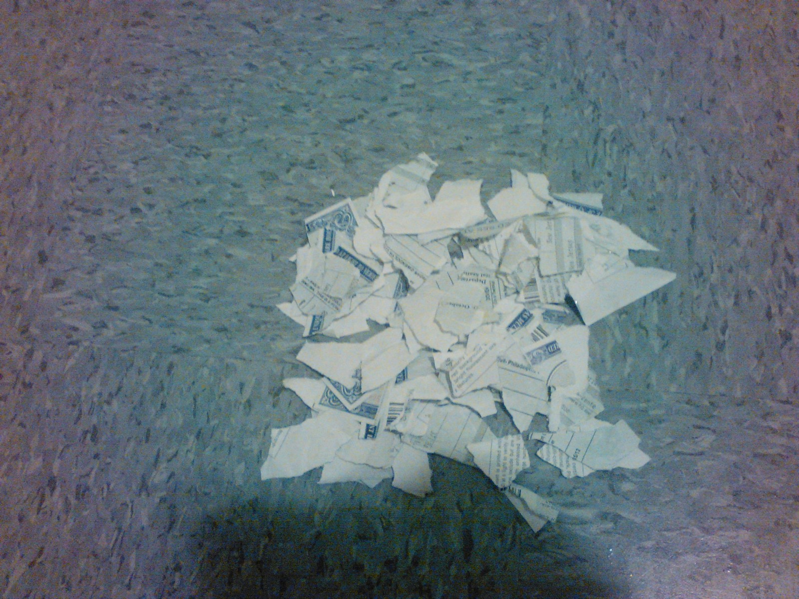 Why i ripped up my new jersey birth certificate jordan gwendolyn image description a ripped up deadnaming and misgendering birth certificate on a tile floor 1betcityfo Image collections