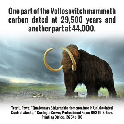 carbon dating woolly mammoth