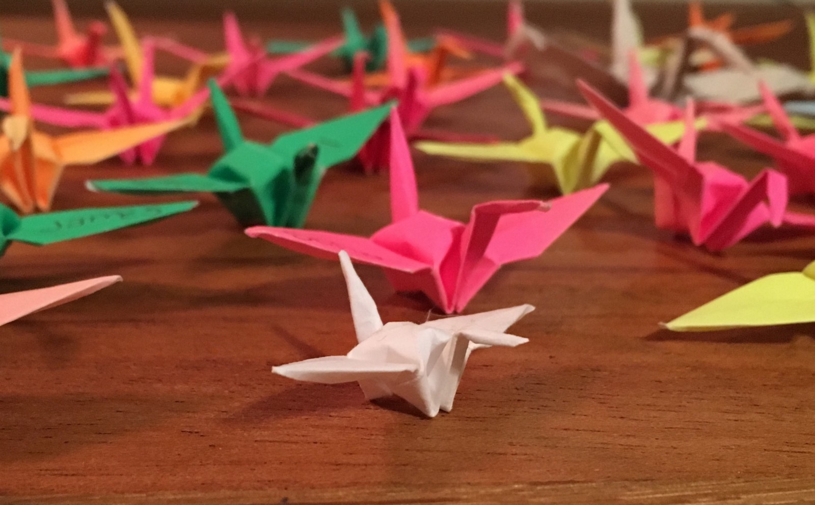 An Origami Crane Is One Of Only Two Things I Can Fold In The World Art Remember Being Quite Pleased With Myself When Finally Managed To Make