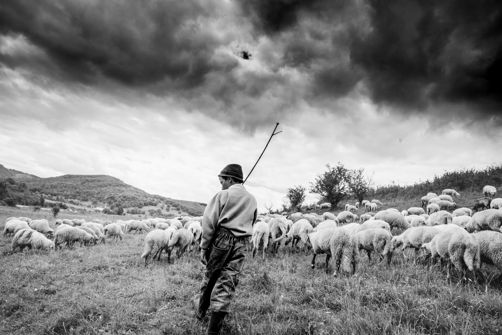 tips for documenting your Vacation: Take a photo day: Romanian herder with sheep