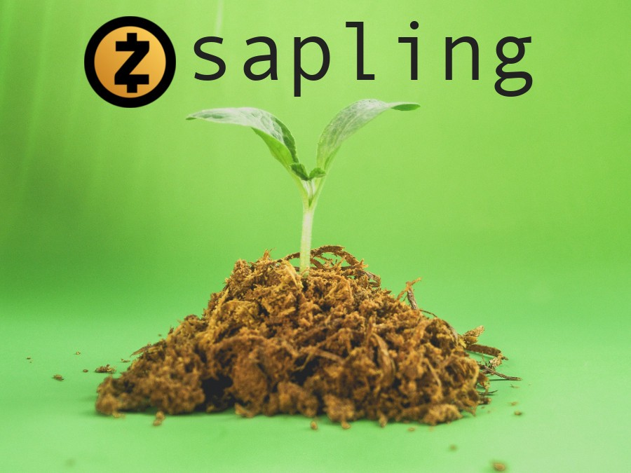 medium.com - John Westbrook - Everything You Need to Know About the Upcoming Zcash Sapling Upgrade: Why It's So Important and…
