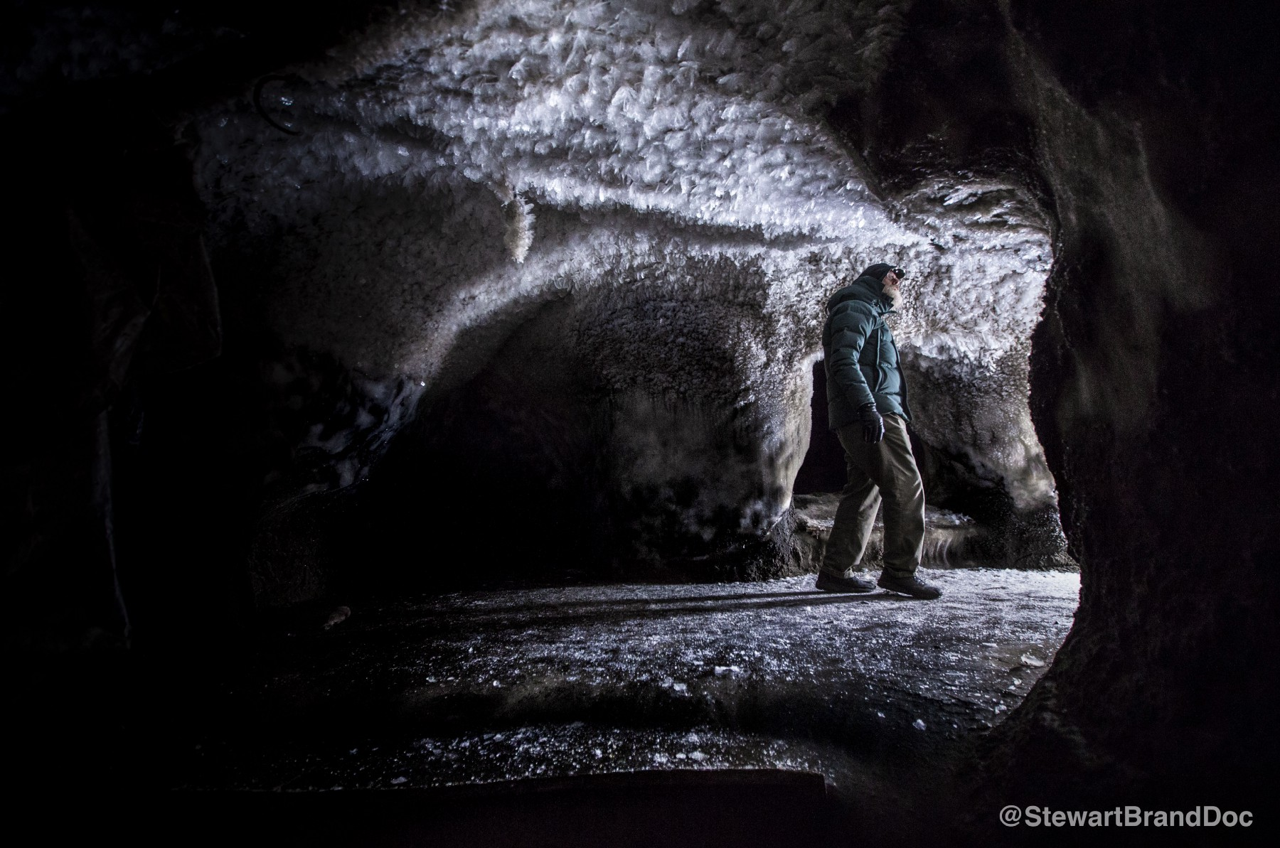 A Journey to Siberia in Search of Woolly Mammoths