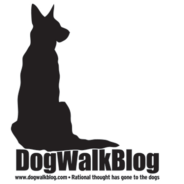 Dog Walk Blog