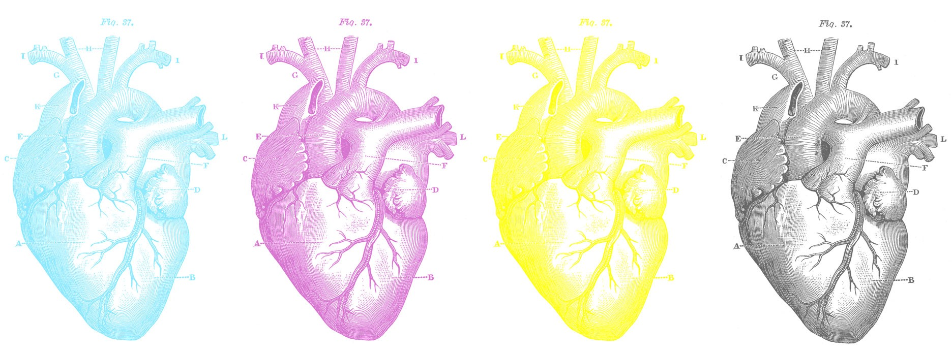 The Art of Designing With Heart – Signal v. Noise