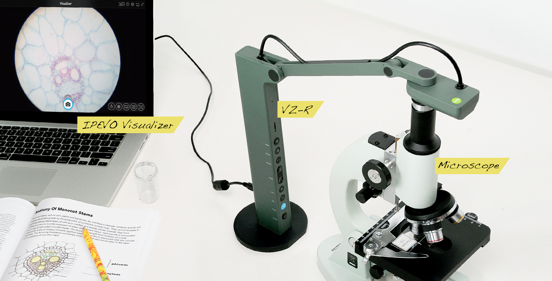 Get A Closer Look By Using Ipevos Document Cameras With A Microscope