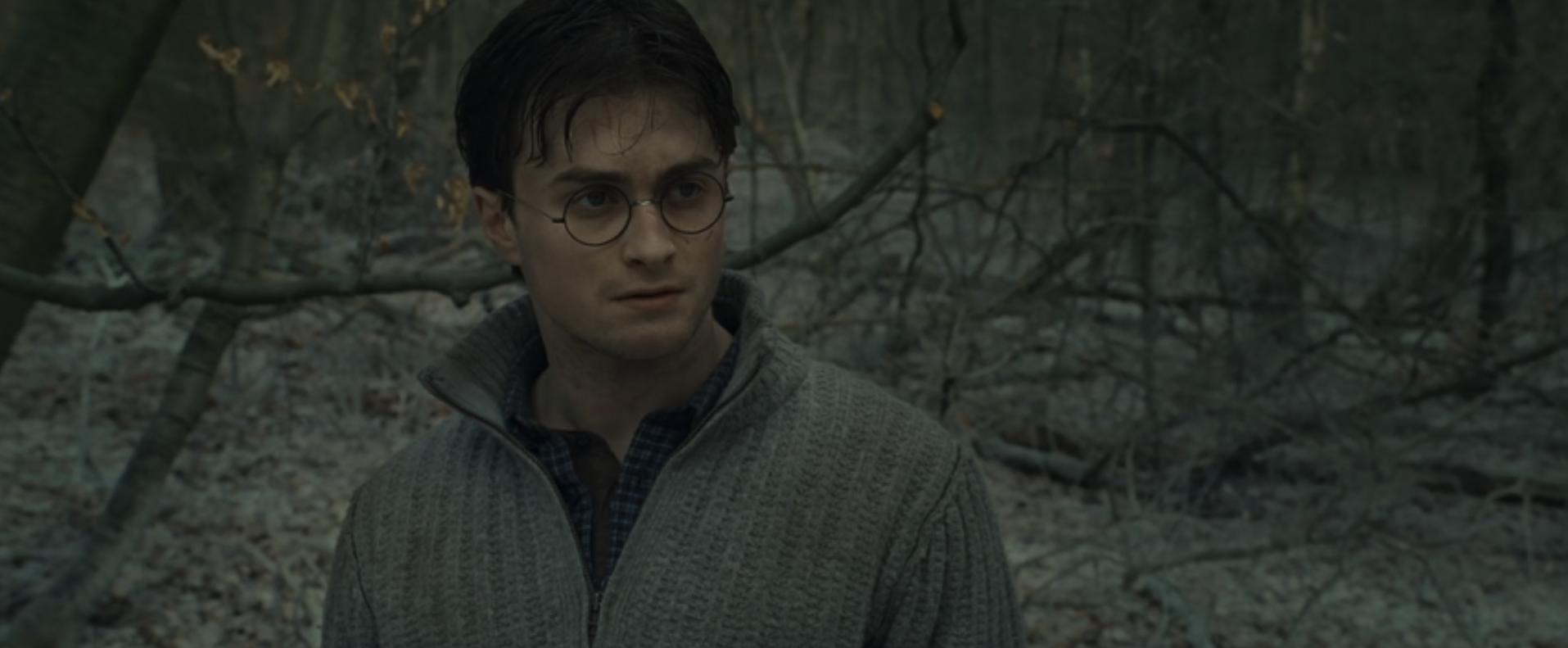 harry potter and the deathly hallows part 1 is all grown up