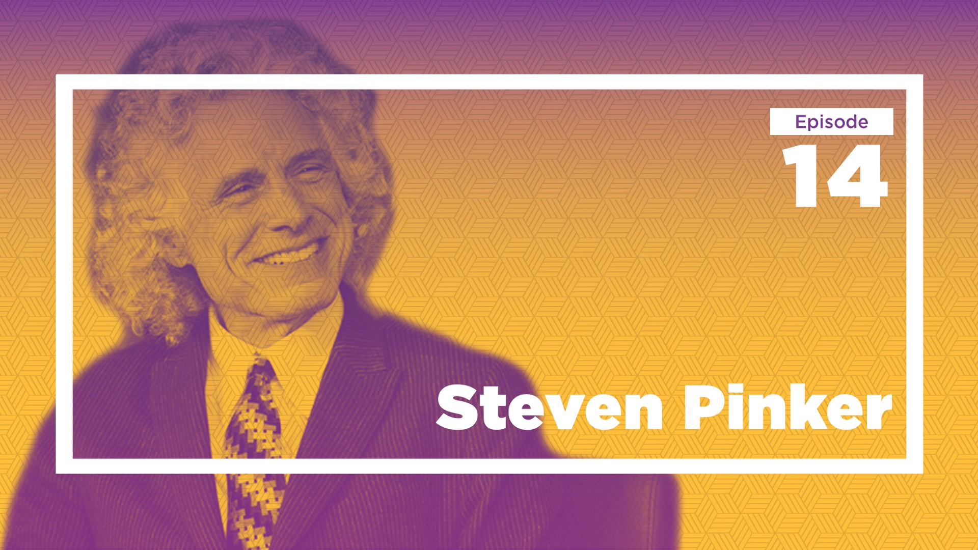 Steven Pinker On Language Reason And The Future Of Violence Ep
