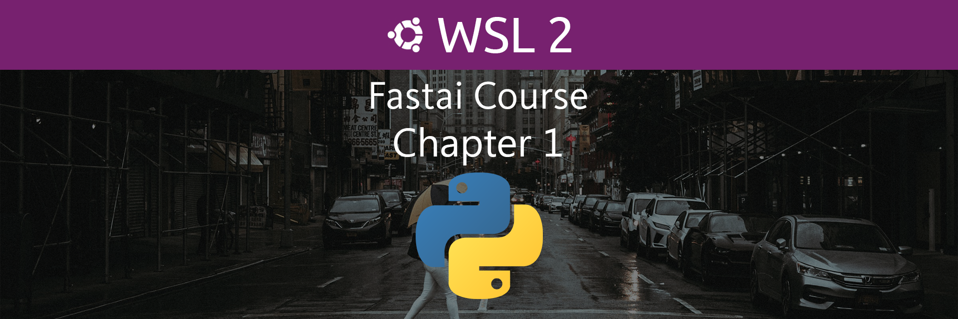 Fastai Course Chapter 1 on WSL2