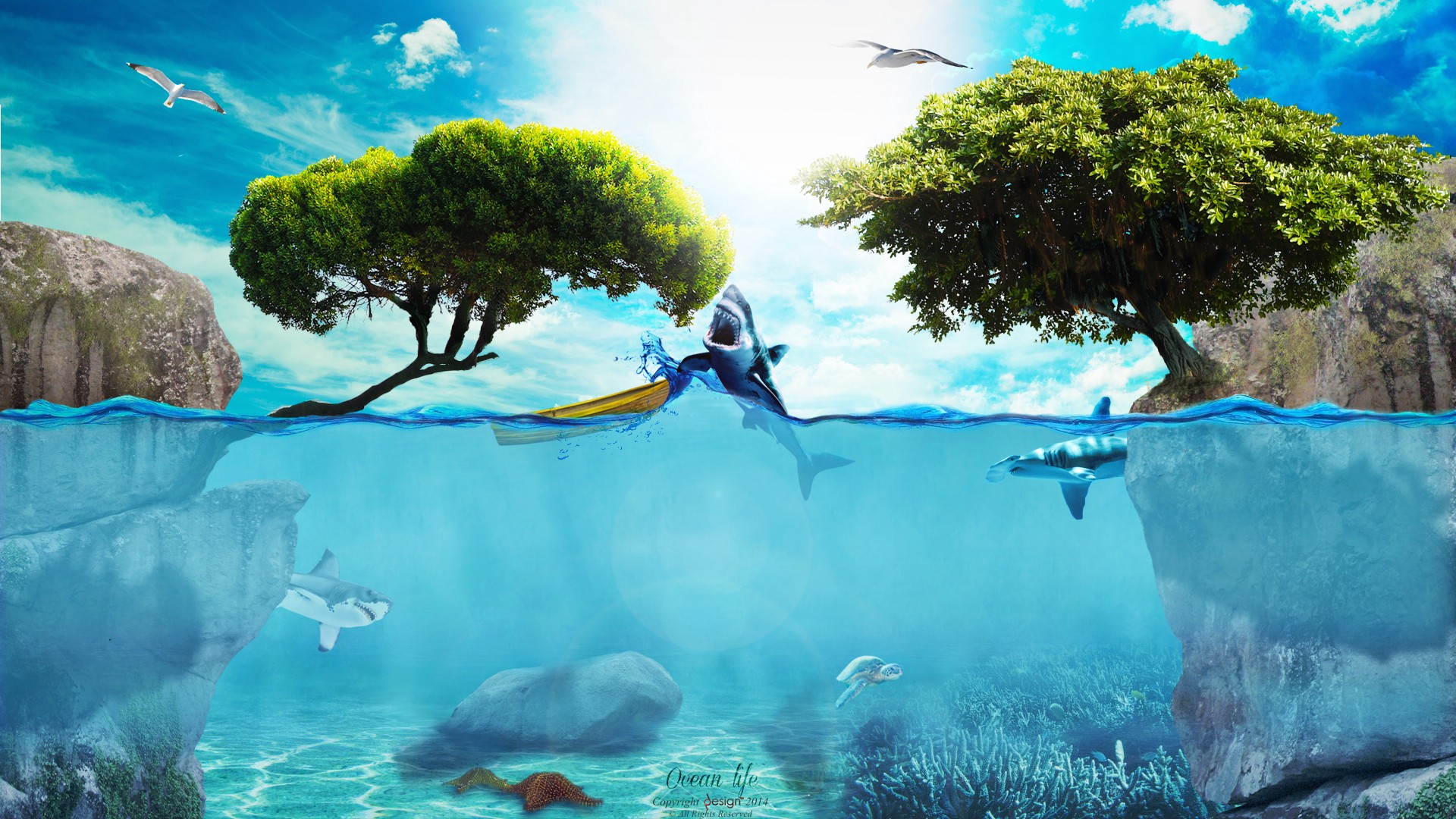 ocean life power and spirituality relationship from new viewpoint