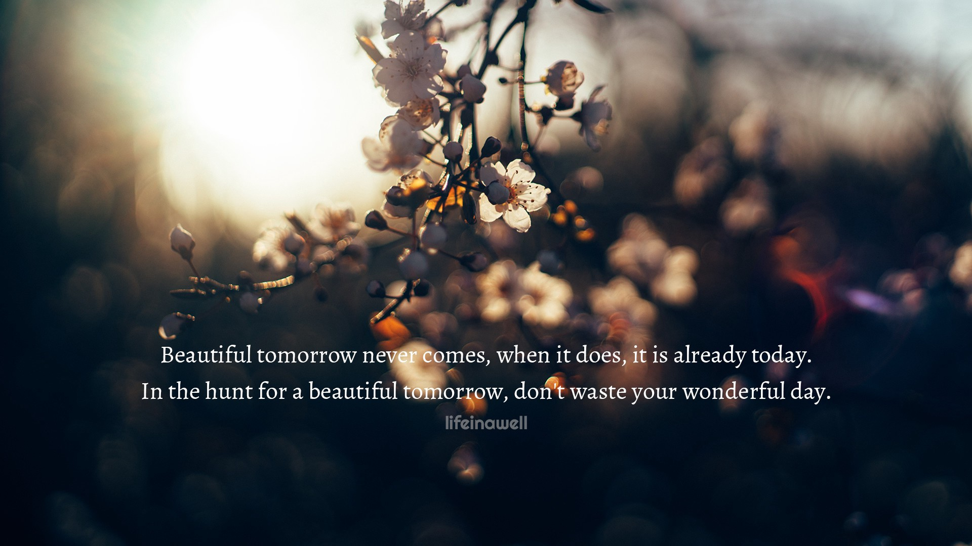 Beautiful Tomorrow Never Comes Life In A Well Quotes Medium