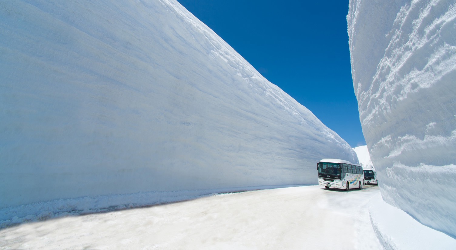 Guide To Tateyama Kurobe Alpine Route Japan Travel Guide