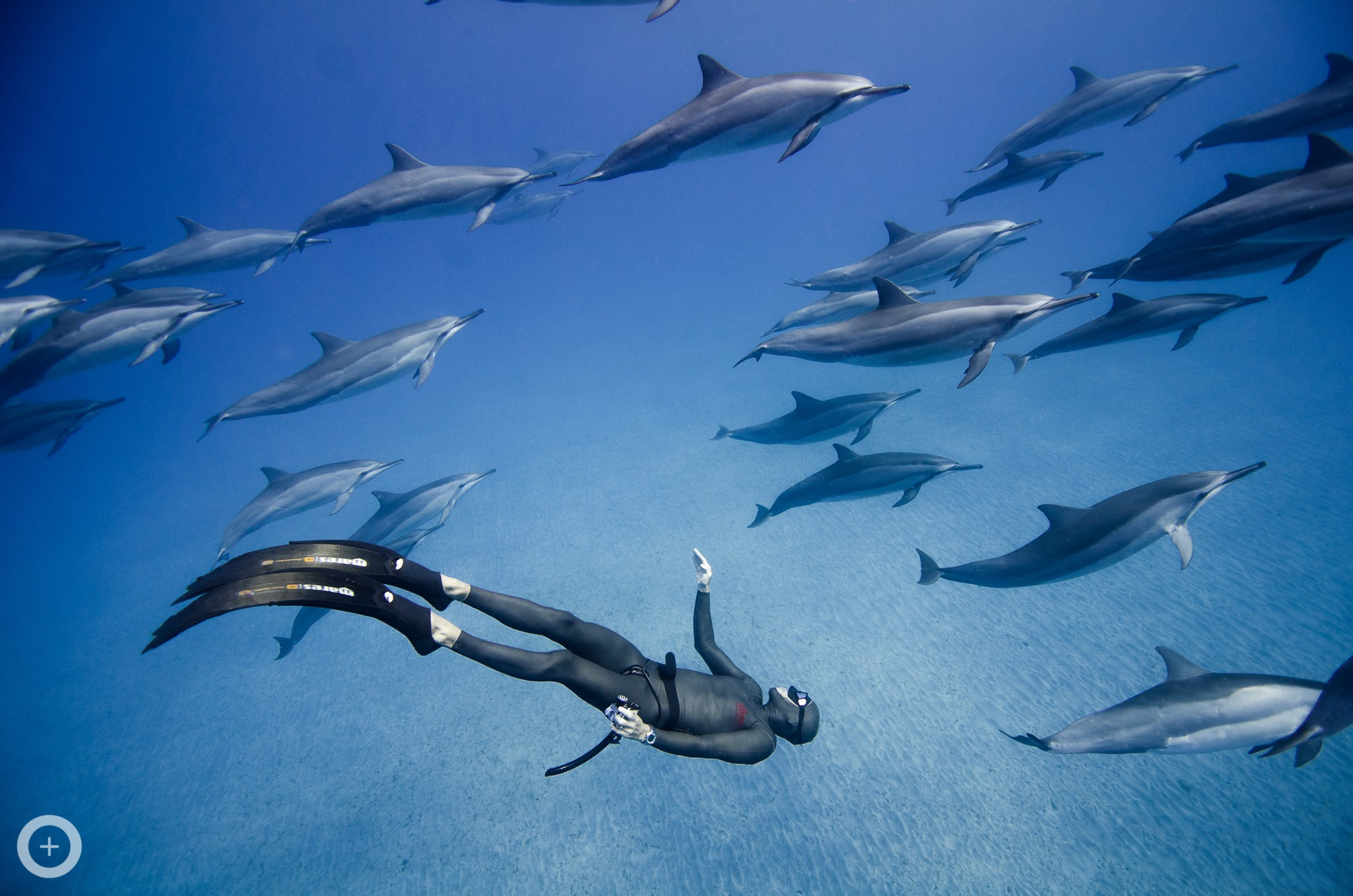 Meet the freediving couple who make stunning underwater - Porno dive hd ...
