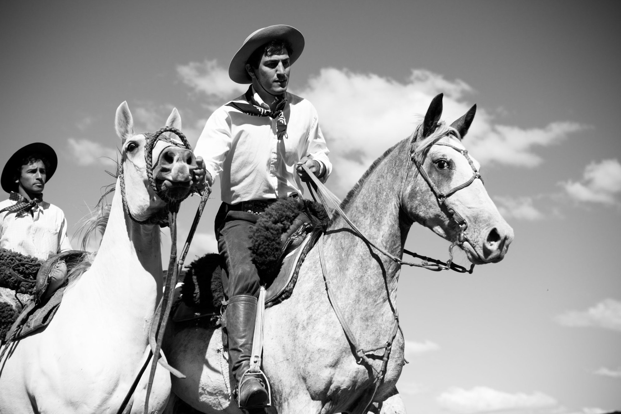 The native crillio horse is known for its endurance and ability to survive in harsh conditions. UNESCO has designated the breed to be an aspect of Uruguay's intangible cultural heritage ©James Fisher 2017 All Rights Reserved