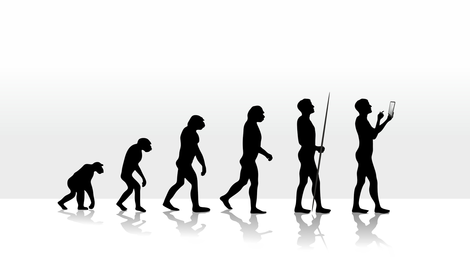 the evolution of consumer behavior in the digital age