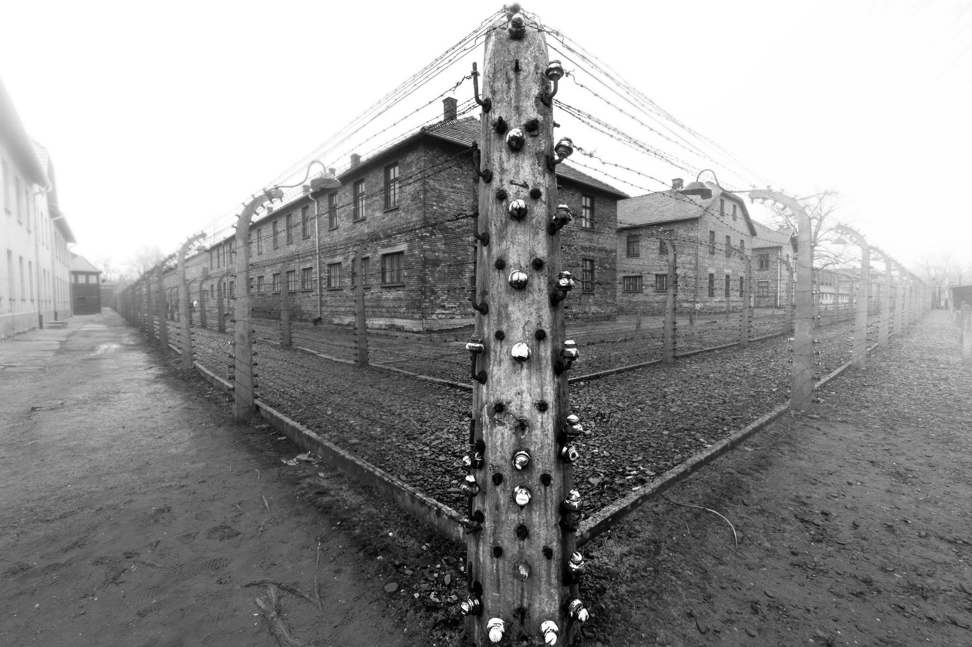 Barbed wire fencing around the grounds of Auschwitz I.