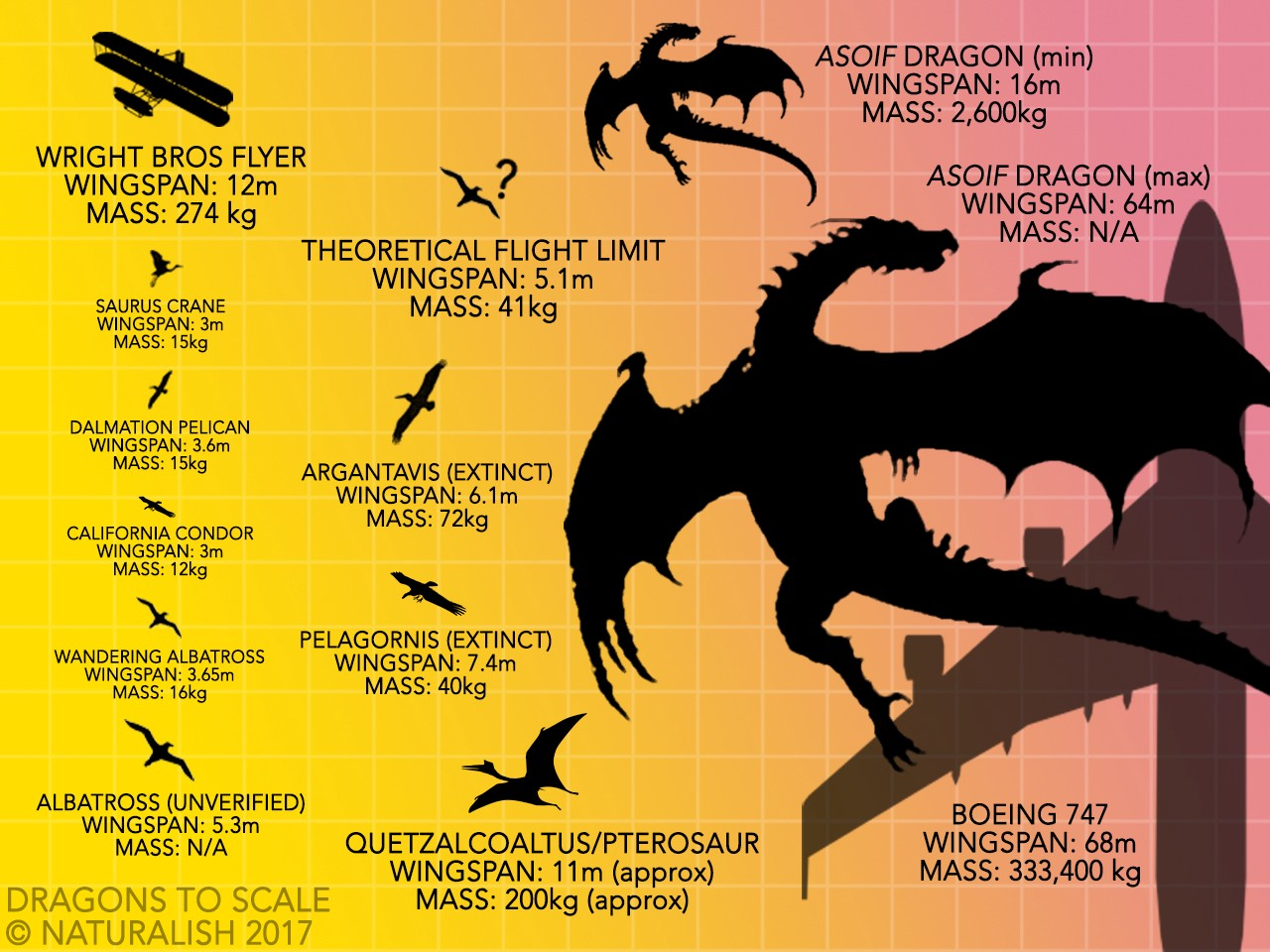 How Dragons Fly When Biology Trumps Physics Applaudience Medium Chicken Wing Anatomy Diagram 2png Some Of The Biggestand Most Iconicflying Animals In All History And Non