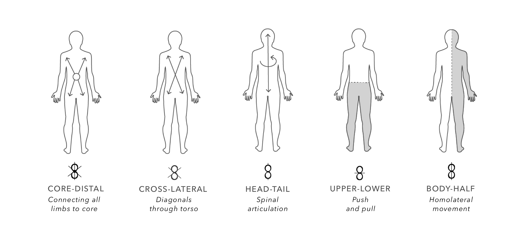 diagram of body movements choice image how to guide and