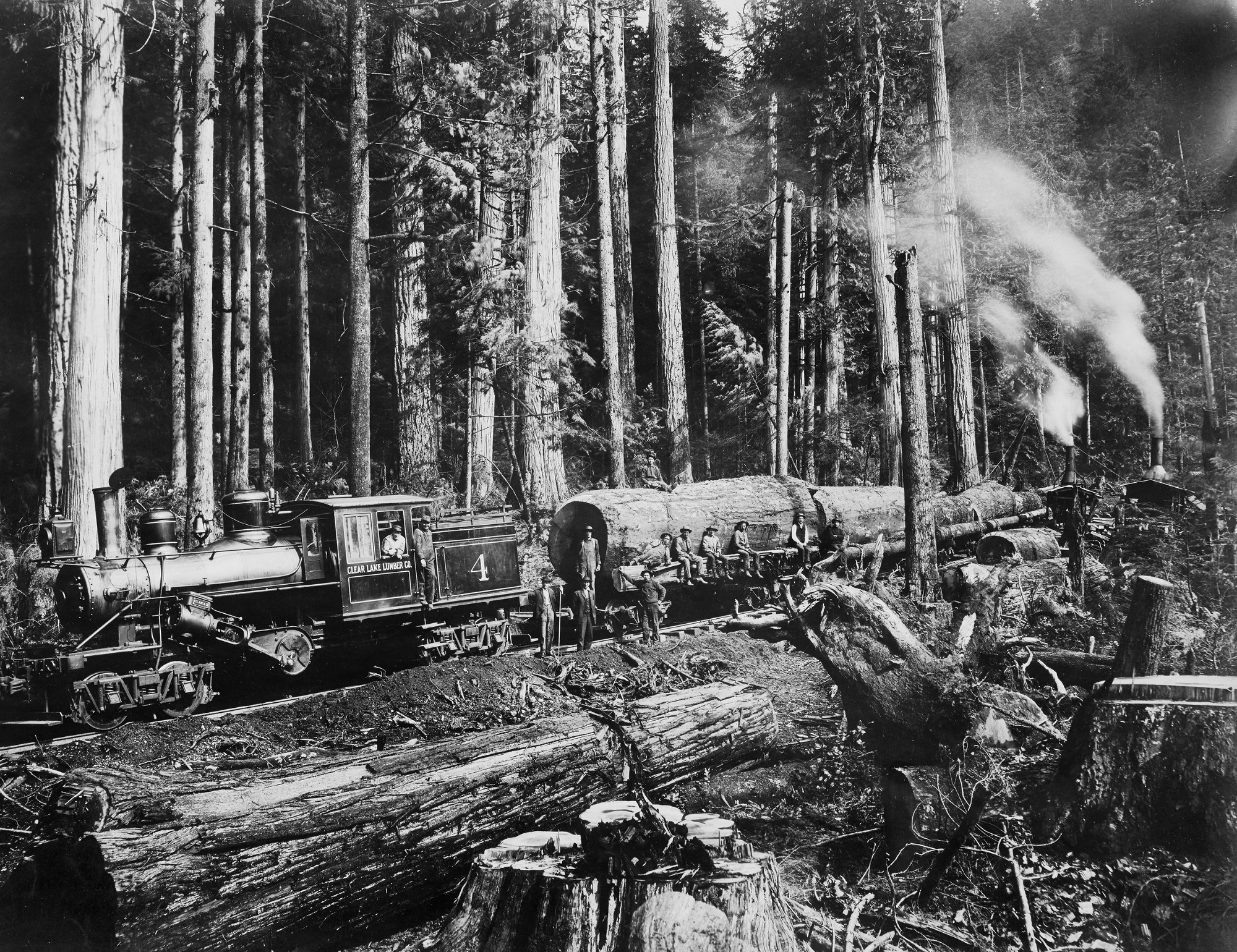 Sawn Timbers Supply In Washington State ~ Early logging photos show the taming — and tarnishing of