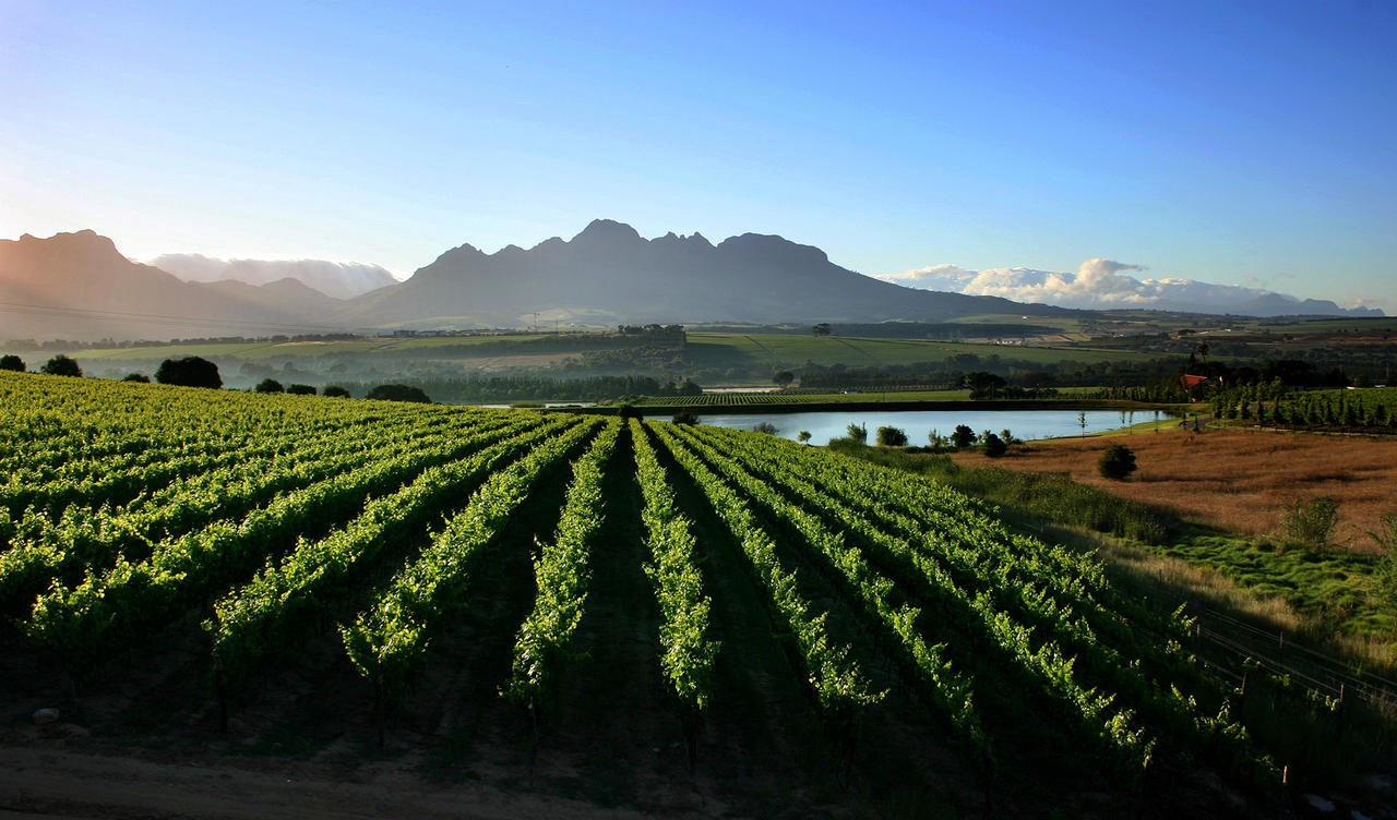 Explore the cape winelands with southern ambition africa for Jardin wine south africa