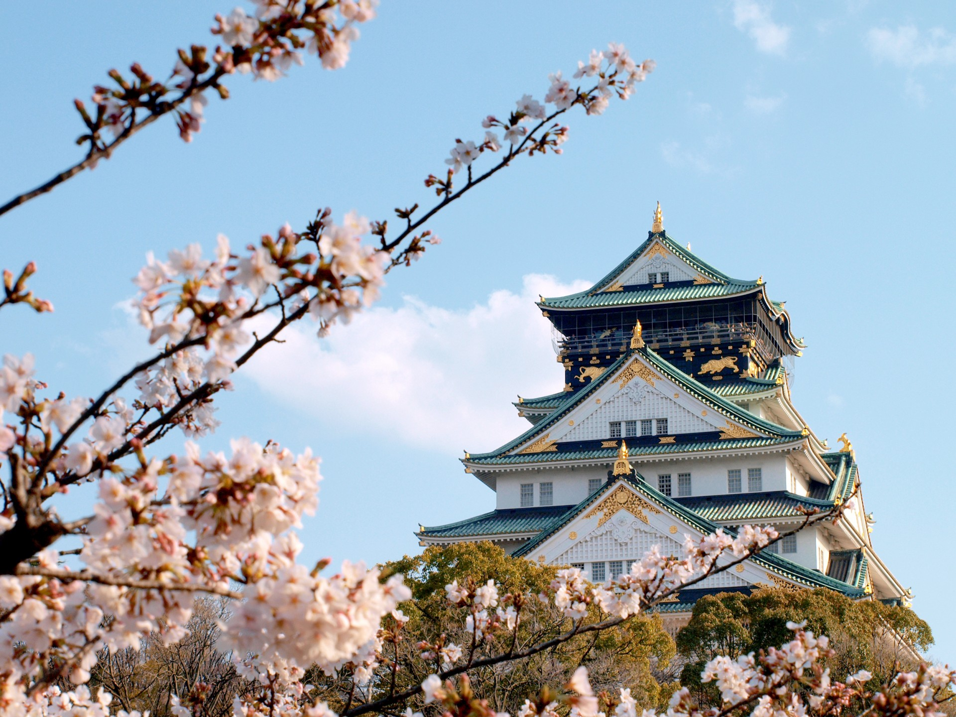 3 Best Cherry Blossom Viewing Spots In Osaka