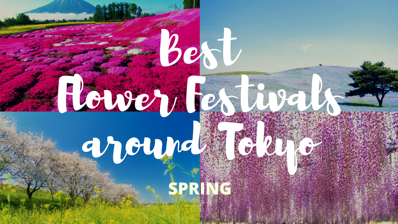 7 must visit flower festivals around tokyo in spring mightylinksfo
