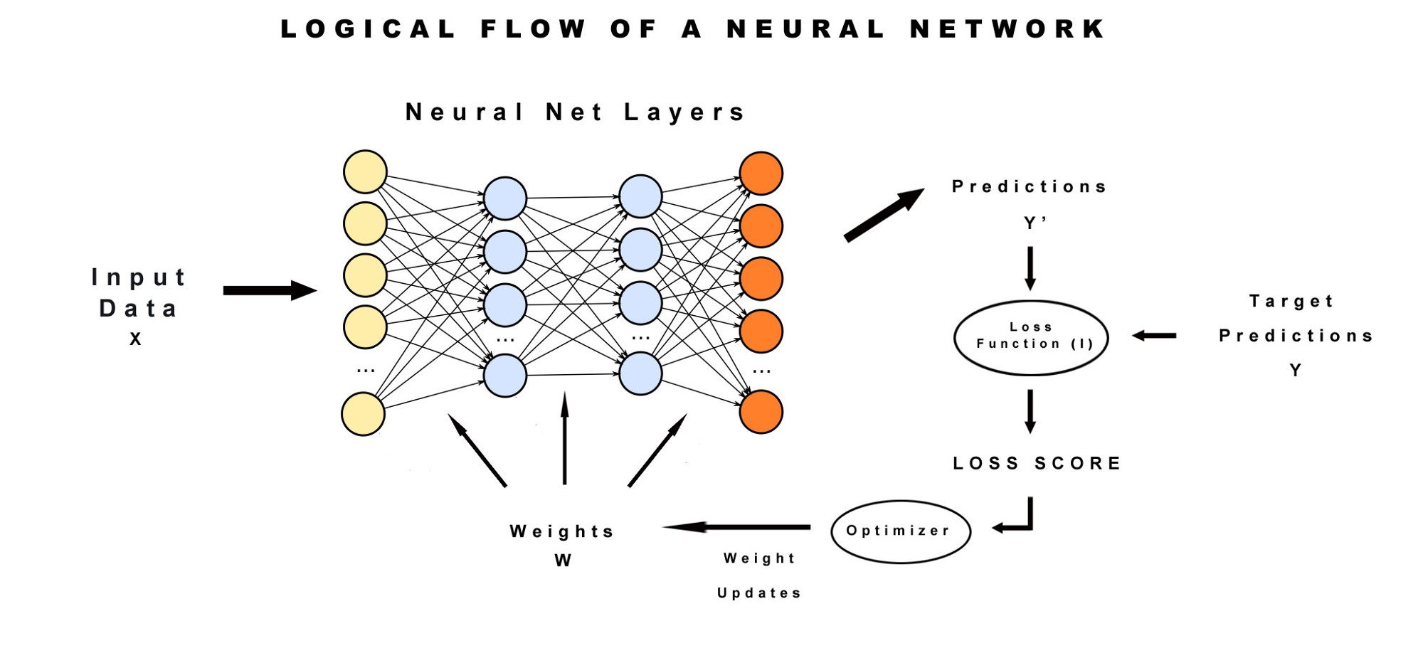 Learning ai if you suck at math p5 deep learning and input data biocorpaavc